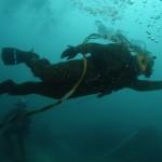 diver-83511