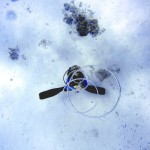 scuba-diving-185486